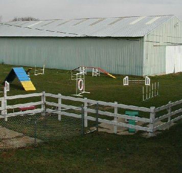 photo of agility area